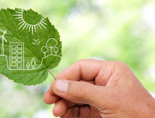 Zo woon je duurzaam: 7 manieren