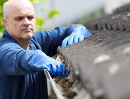 Reinig jaarlijks uw dak en voorkom problemen