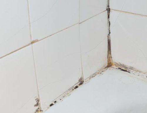 Hoe ontstaat schimmel in de badkamer?